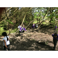 Fun in our woodland area