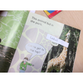 We labelled the text