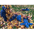 So much fun with a pile of leaves
