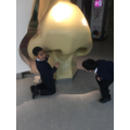 Exploring the giant nose