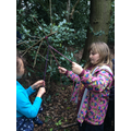 Developing cooperation skills