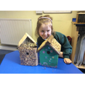 Tippy made two bird boxes!