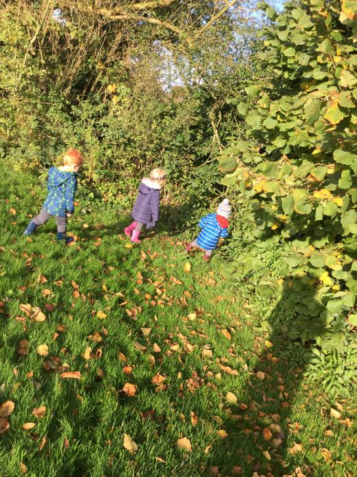 We collected leaves to make autumn pictures