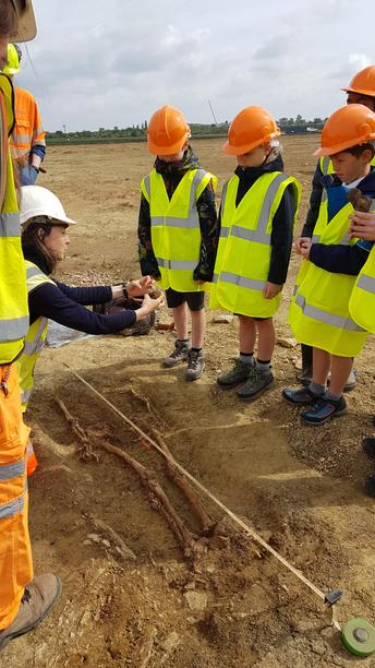 The children investigate a roman skeleton in situ.