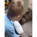 Helping to feed the cat.