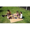 Family picnic!