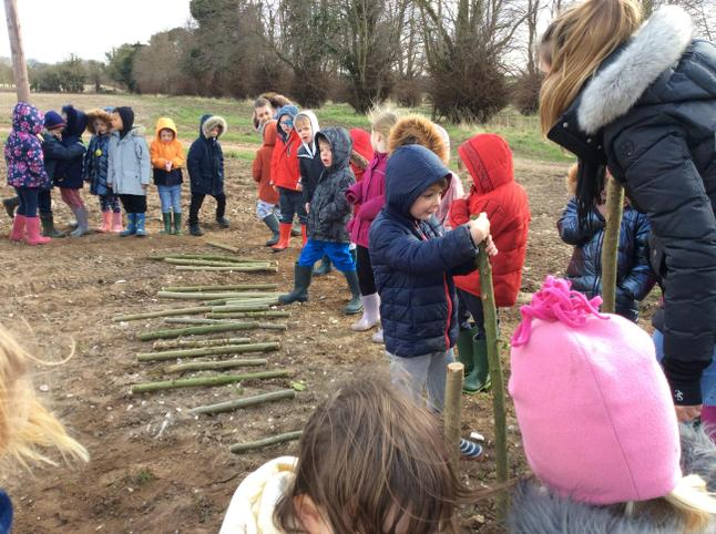 Comparing branches lengths. 'Mine is shorter'