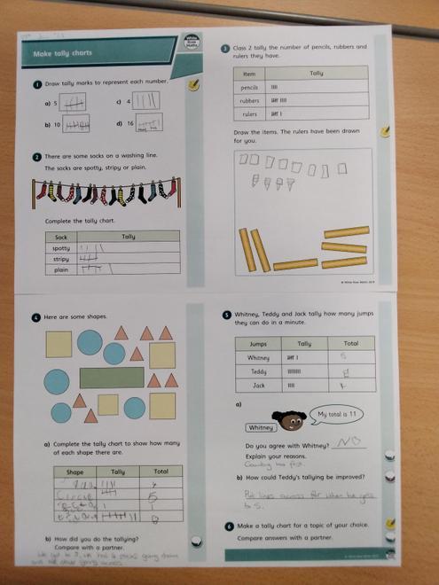 Leo's Maths-Making Tally Charts