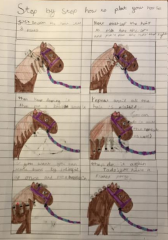 Evie's English - Instructions on how to plait your horses mane.