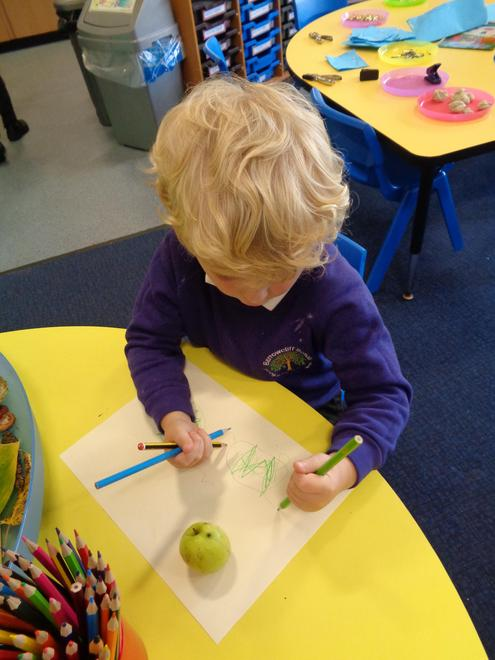 Observational drawing - signs of autum