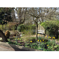 The garden in early Spring