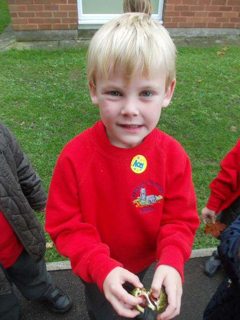 Some of the shells had two conkers inside!