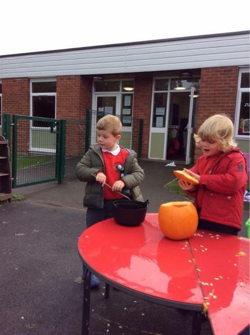 Exploring the pumpkin