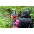 Hilliers Garden Trip - October