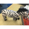 We received Zebie the Zebra and 2 books.
