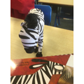 Zebie looking at 'Greedy Zebra' and '30 Amazing Facts about Zebras' A