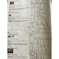 Y4 - cross curricular Maths (World Book Day)