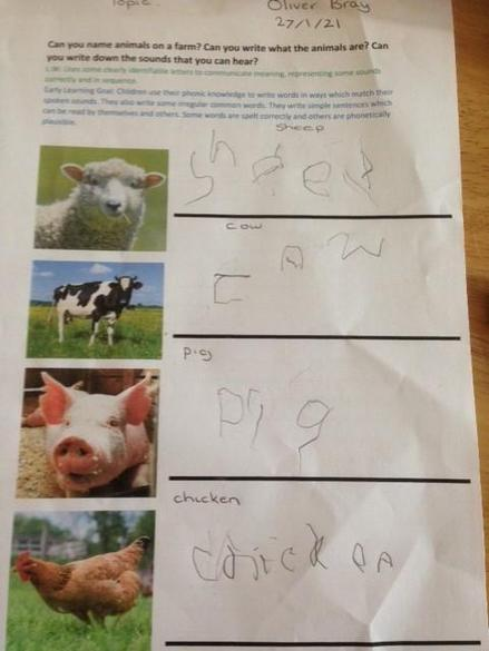 Farm Animal Writing