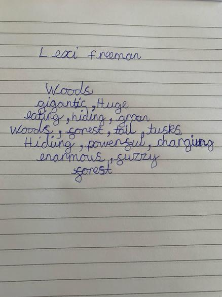 Lexi's Poem