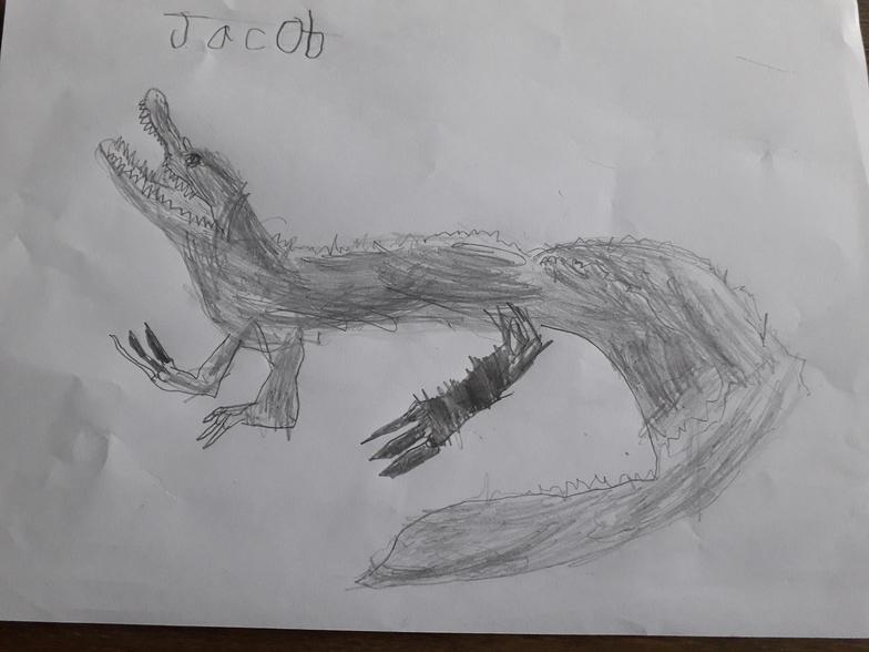 Jacob's Crocodile
