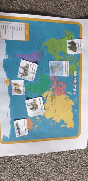 Jayden's Geography Work