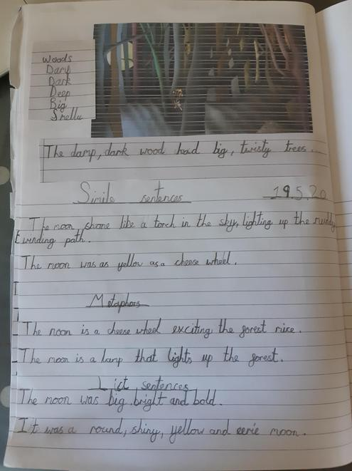 Lovely examples of Simile and Metaphor sentences!
