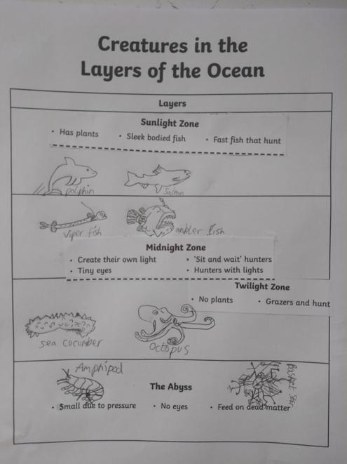 Very detailed drawings and interesting learning!