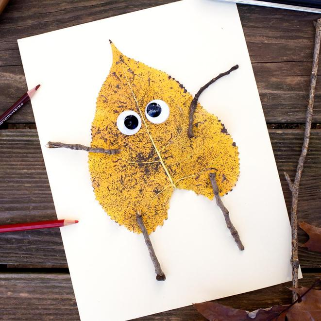 Make and send a picture made from natural objects.