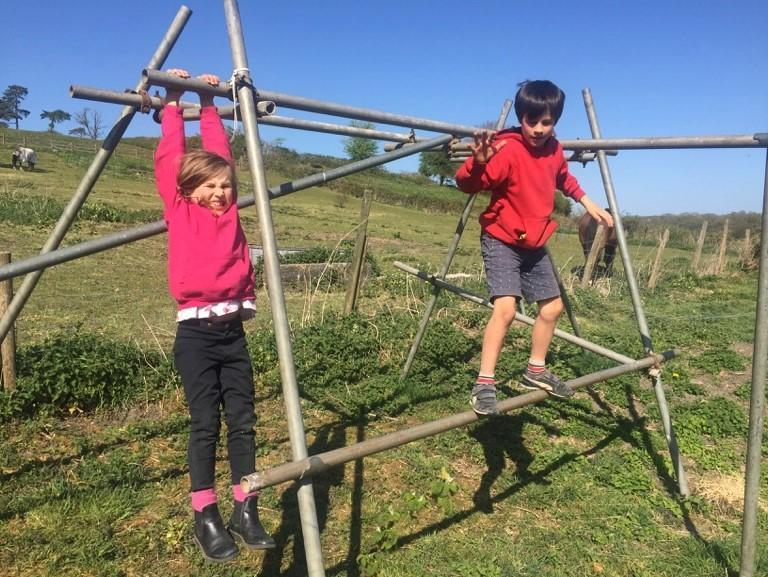 Wyn and Sybil designed their own climbing frame!