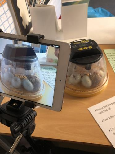 Time lapse video set up