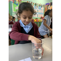 We used water to see which materials are absorbent.