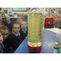 Then we put food colouring into the bottle.