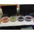 Four of the five dyes we made today.