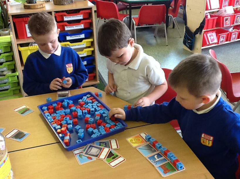 Spelling CVC words independently.