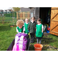 Potato Competition for Class 3