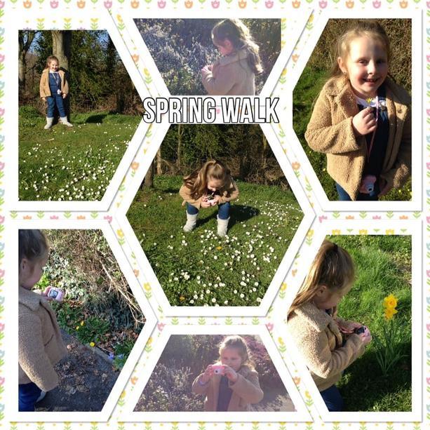 Betsy's spring walk