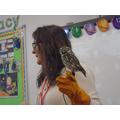 Henry the Little Owl
