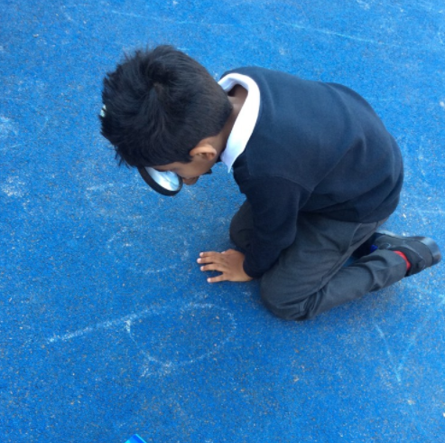 We are going on a phoneme hunt...what words can we find?