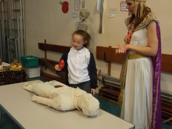We got to take organs out of the mummy.