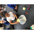 Experiments in Year 1