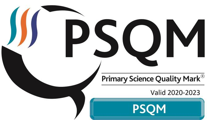 In June 2020, we were enormously proud of achieving the Primary Science Quality Mark