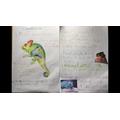 Carter's super chameleon writing