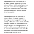 Zoya's Kapok Tree Page 2.JPG