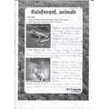 Zoya's Rainforest Animal Facts.jpg