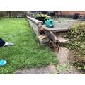 Rodney in his new garden