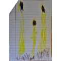 Ruiben has drawn a sunflower picture for science.