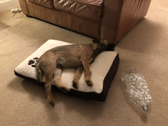 I'm too big for this cushion.