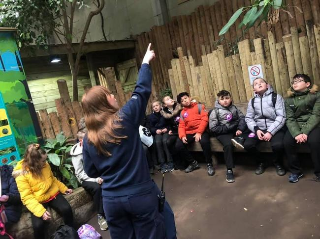 Y6 trip to Chester Zoo to study evolution
