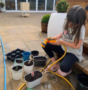 Rose watering her plants.