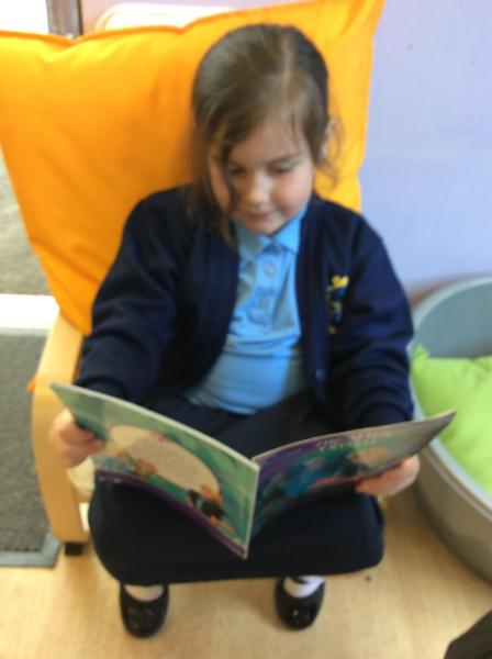 reading a story